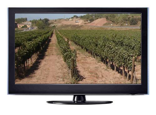 Viñas TV